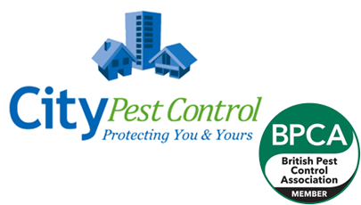 City Pest Control logo